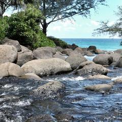 Die letzte Hürde vor dem Ziel der ersten Etappe des Kalalau-Trails ist dieser Bach, dessen Überquerung nicht ganz einfach ist: Entweder hüpft man von Stein zu Stein oder zieht seine Schuhe aus und watet durch das Wasser - © bergleben.de/Sebastian Lindemeyer