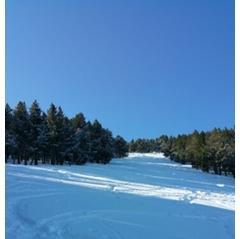 Ventoux - Mont Serein - a passé une bonne journée le 18 et 19  22 cm de neige fraîche dans la semaine mais ça ne tiendra pas longtemps
