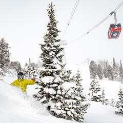 Mountain Collective Pricing & Benefits - ©Courtesy of Jackson Hole Mountain Resort