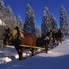 Tour du monde hivernal sans quitter le Doubs... - ©Conseil Départemental du Doubs