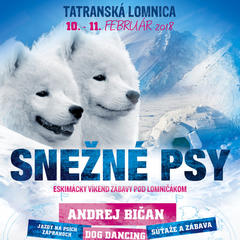 Snežné psy v Tatranskej Lomnici - © www.vt.sk