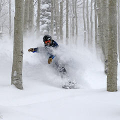 Steamboat's Champagne Powder® - © Larry Pierce