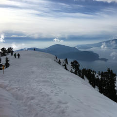 cypress mountain mountain stats onthesnow. Black Bedroom Furniture Sets. Home Design Ideas