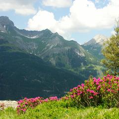 Päť tipov na turistiku v okolí St. Anton am Arlberg - ©TVB St. Anton am Arlberg/Fotograf Christian Schranz