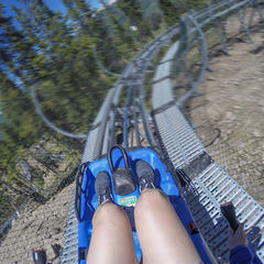 The Vail Forest Flyer  - © Andrew Taylor, Vail Resorts