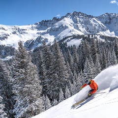 Which Ski Is Right for You? - ©Annie