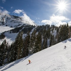 The ladies certainly enjoyed ripping up the hardpack at Snowbird. - ©Liam Doran