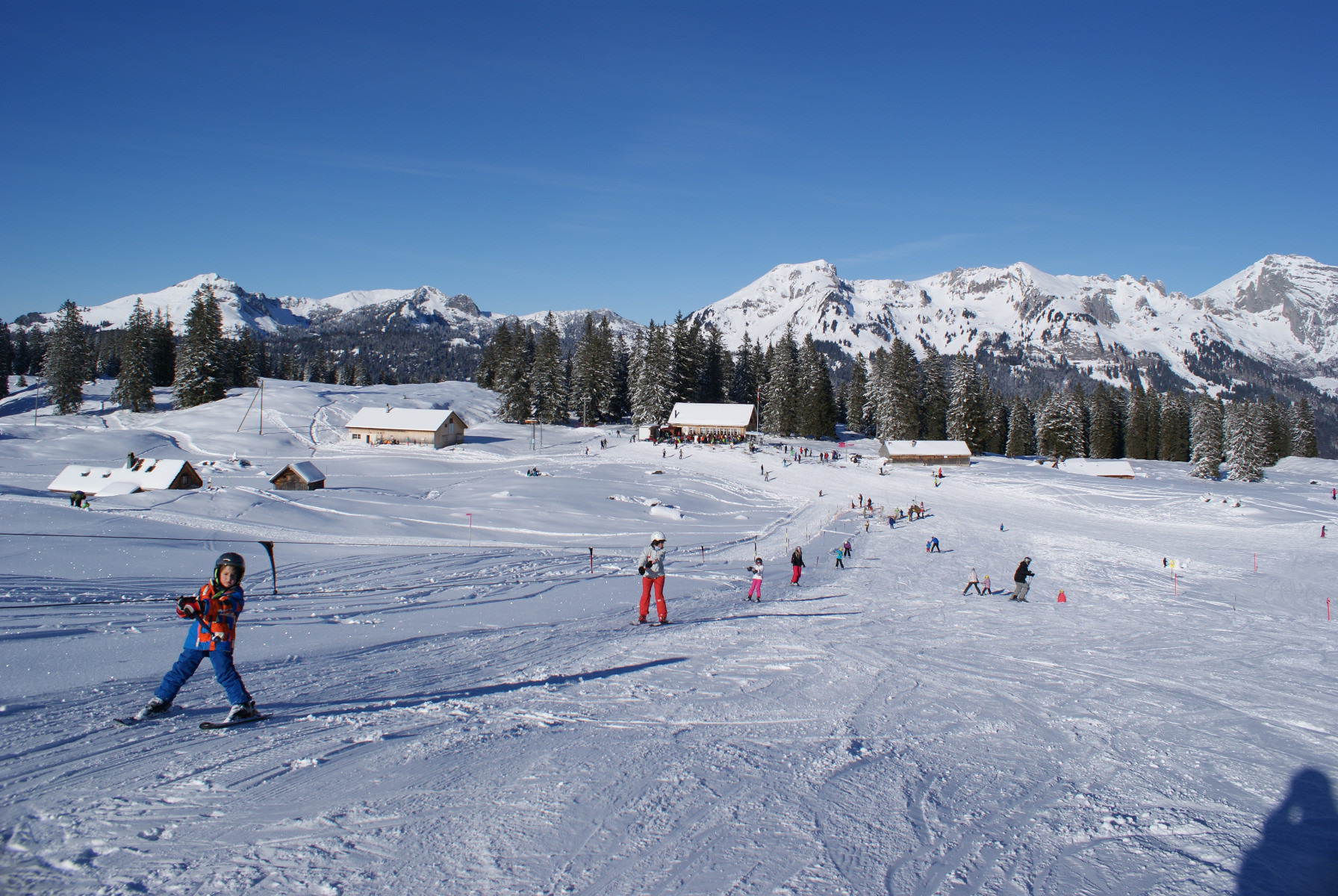 toggenburg reviews | onthesnow